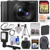 Panasonic Lumix DMC-LX10 4K Wi-Fi Digital Camera with 64GB Card + Battery + Case + Tripod + LED Video Light + Strap + Kit