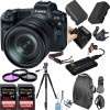 Canon EOS R Mirrorless Digital Camera with 24-105mm Lens with 2x Sandisk 256GB Memory Cards Essential Package